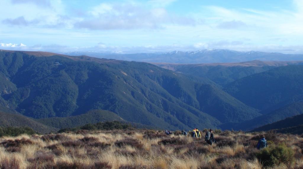 Ruapehu on the far left - heading down the open tussock from Te Iringa