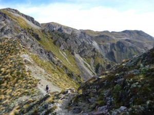 Looking back up to Kaweka North, from Makahu Spur track