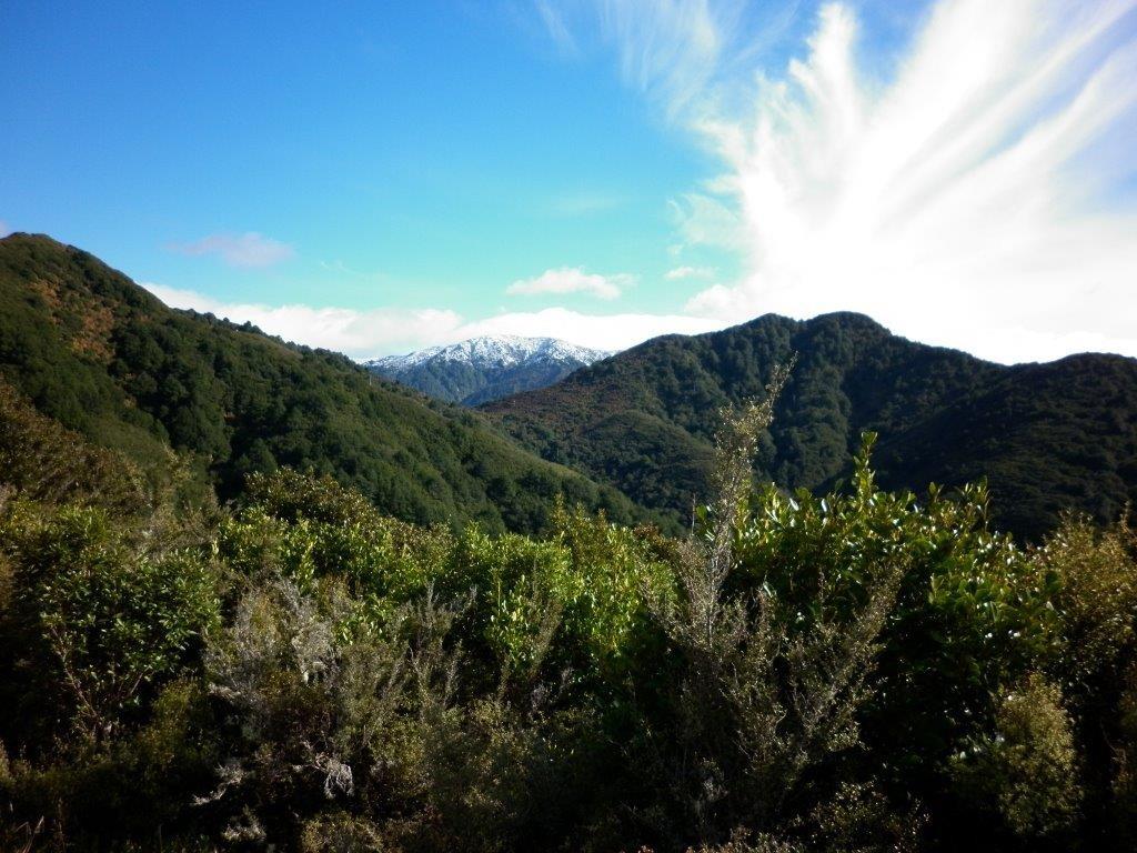 The snow capped Ruahine Ranges on the horizon