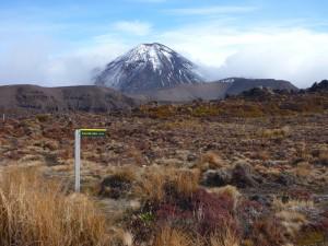 Mt Ngauruhoe from Oturere Hut