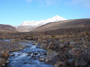 Mt Ruapehu from the eastern side