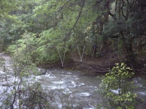 Crossing Makino River