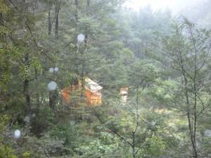 Gold Creek Hut