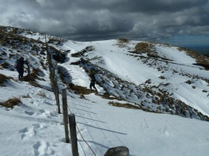 Following the fence line