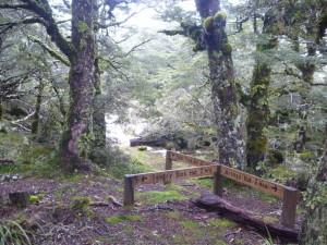 The tops junction for Parks Peak/Sentry Box track