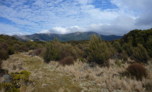 The Kaweka tops from the Middle Hill track. We are headed for the clouds