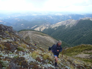 The climb up to the tops from the bushline on Camp Spur