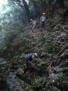 An interesting descent into a tiny side stream before reaching Big Hill Stream