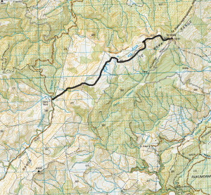The web editor has drawn the route on the  topomap