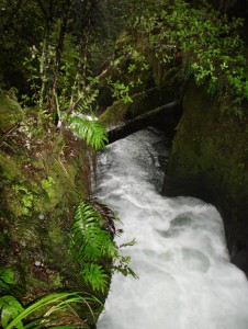 Cascading waters on the way up