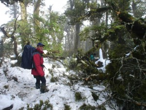 Tree damage and snow slow the advance. Russell and Paul lead the way